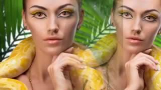 Зір - Видео - видео 5